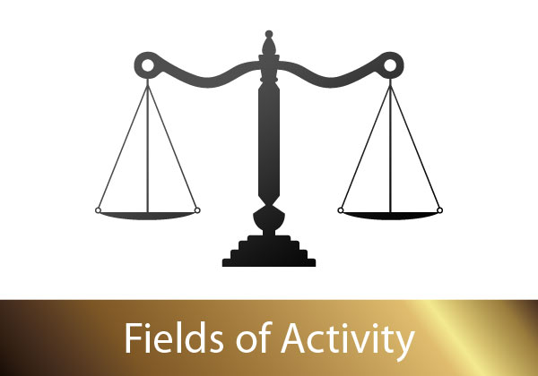 Fields of Activity